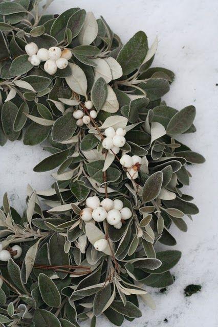 Une couronne de Noel réalisée avec des branches d'eucalyptus et de baies blanches