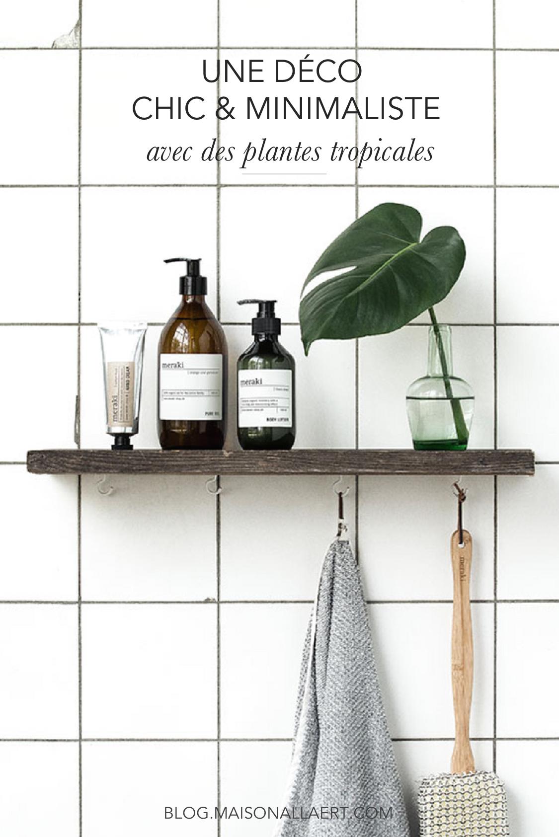 Quelques idées de décoration avec des plantes exotiques